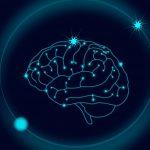 ¿Qué es la epilepsia?